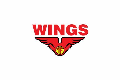 Wings Group (MASB)