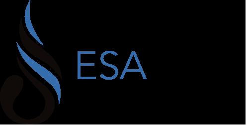 Surya Eka Perkasa (ESSA)